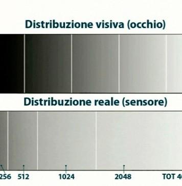 sovraesposizione - distribuzione toni di grigio su di un sensore