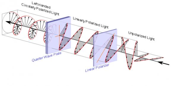 polarizzatore lineare vs polarizzatore circolare