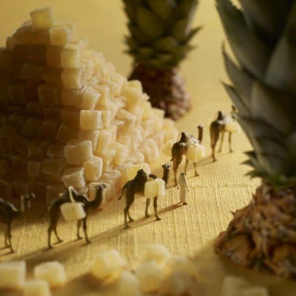 cibo in movimento