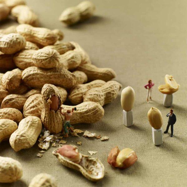 scene da cibo