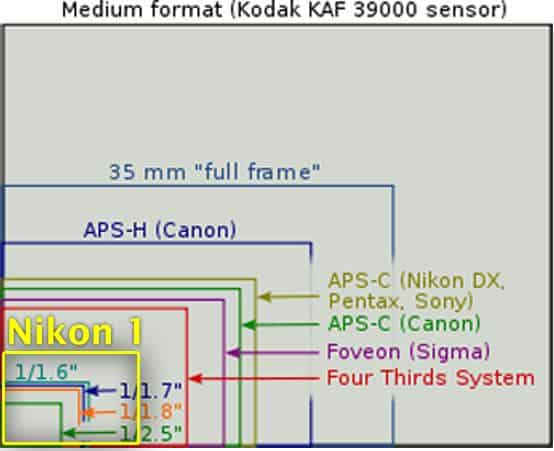 dimensione sensore reflex vs compatta