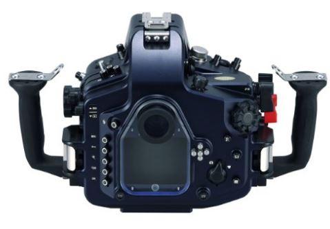 Miglior Camera Subacquea : La fotocamera subacquea quale scegliere fotografare in digitale