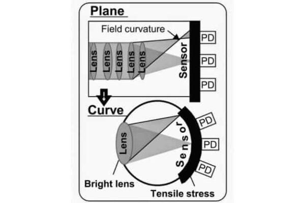 Come la luce incide sul sensore curvo rispetto ad un sensore piano