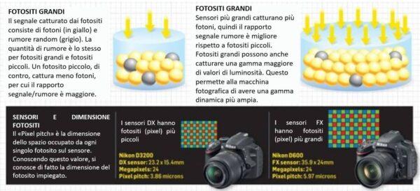 Fotositi più grandi catturano più fotoni
