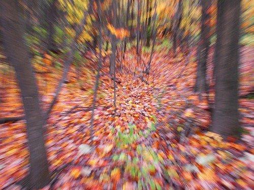 effetto zoom