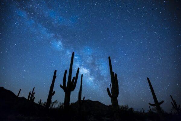 I problemi della fotografia notturna