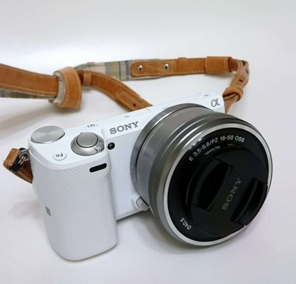 reflex vs mirrorless