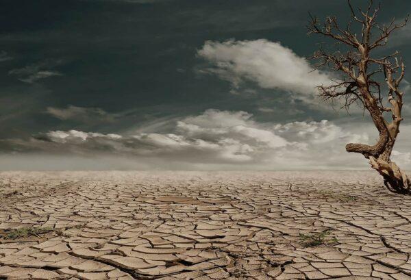 Deserto, Secco