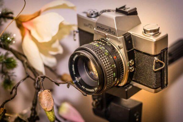 guida per principianti alla fotografia