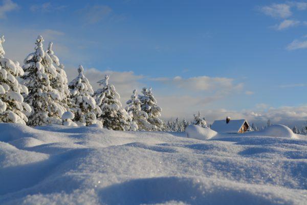 scene invernali
